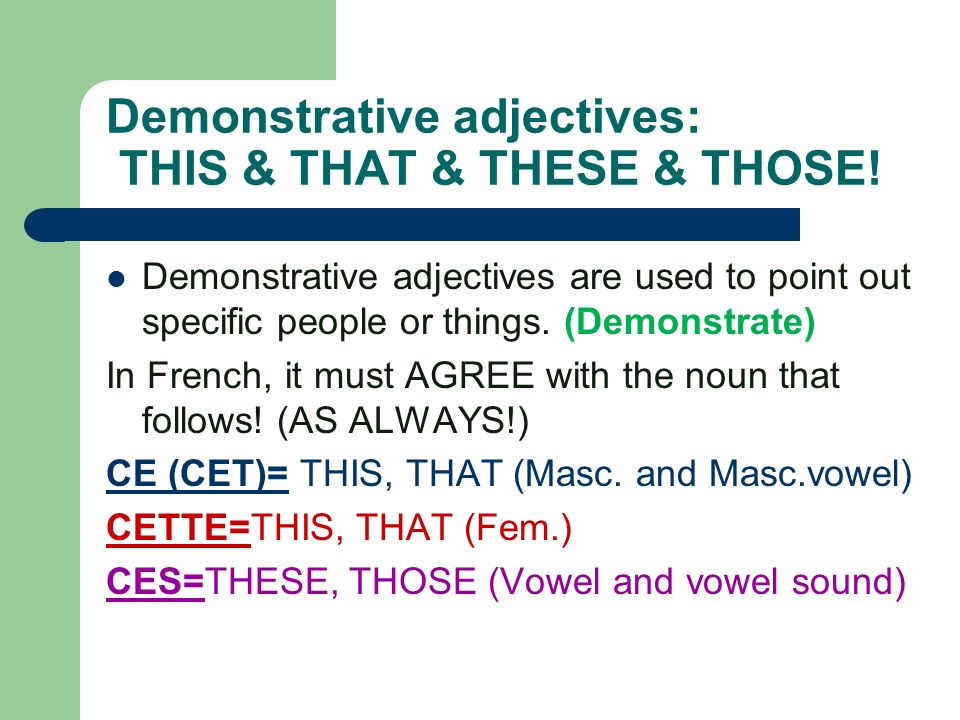 Demonstrative adjectives: THIS & THAT & THESE & THOSE!