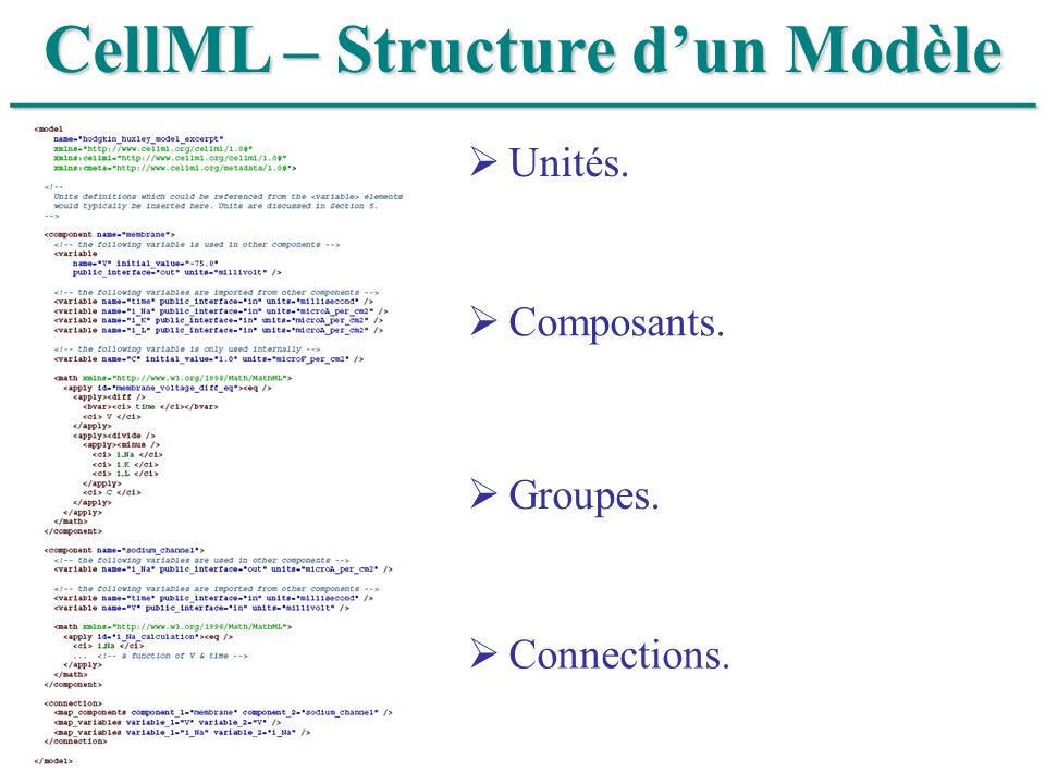 CellML – Structure d'un Modèle