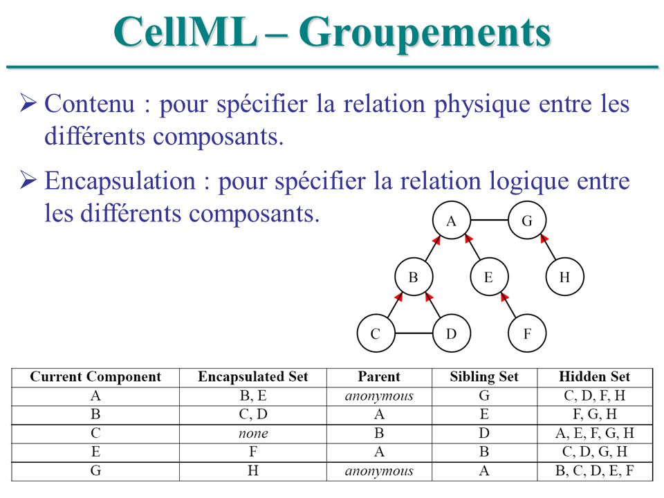______________________________ CellML – Groupements