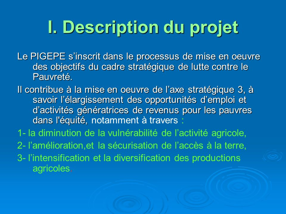 I. Description du projet