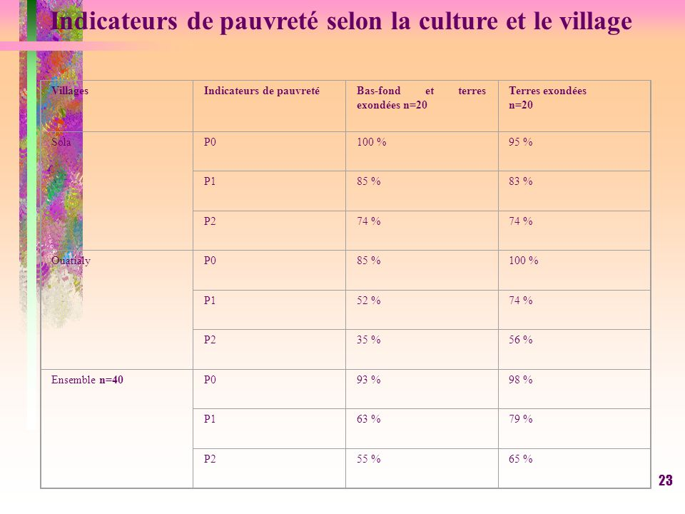 Indicateurs de pauvreté selon la culture et le village