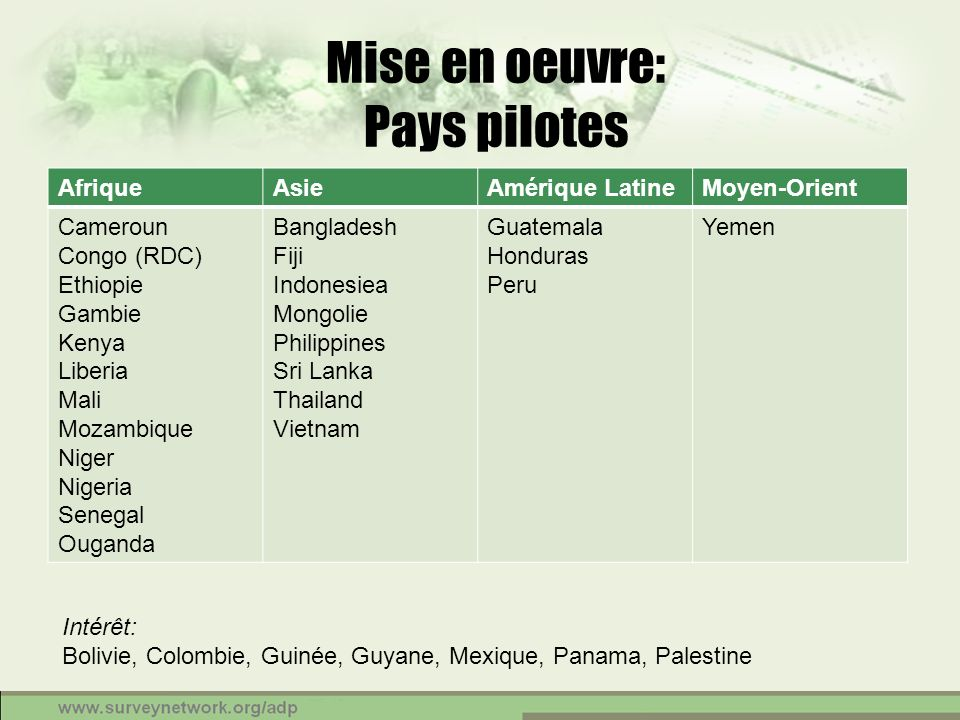 Mise en oeuvre: Pays pilotes