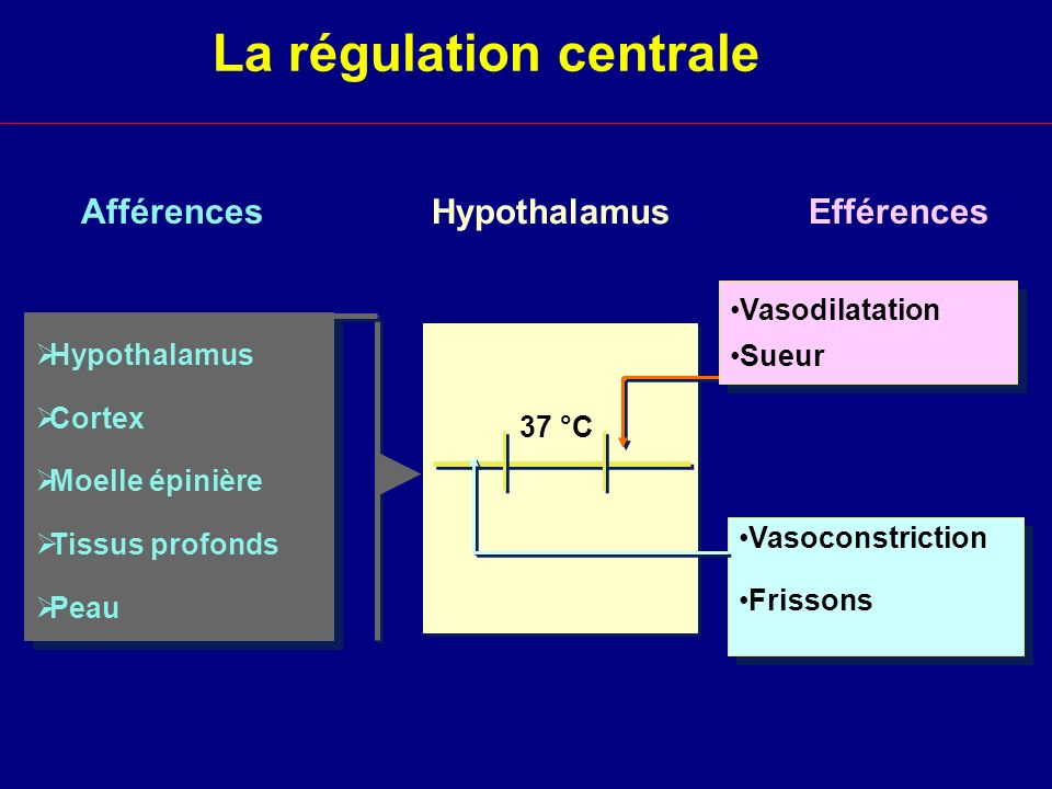 La régulation centrale