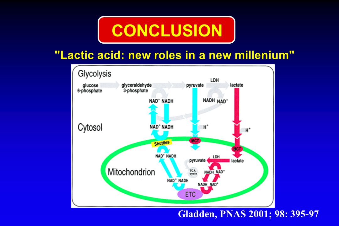 CONCLUSION Lactic acid: new roles in a new millenium