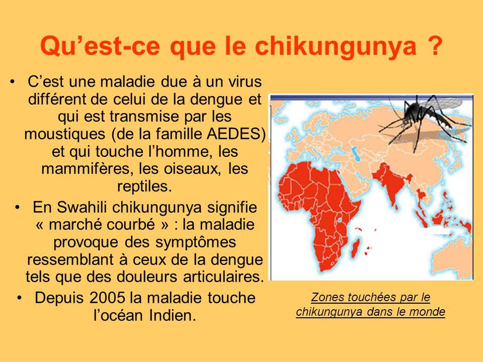 le chikungunya aedes albopictus moustique vecteur ppt. Black Bedroom Furniture Sets. Home Design Ideas