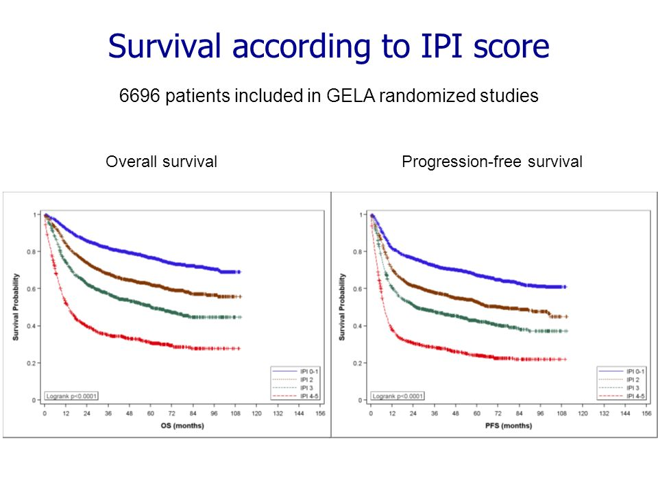 Survival according to IPI score