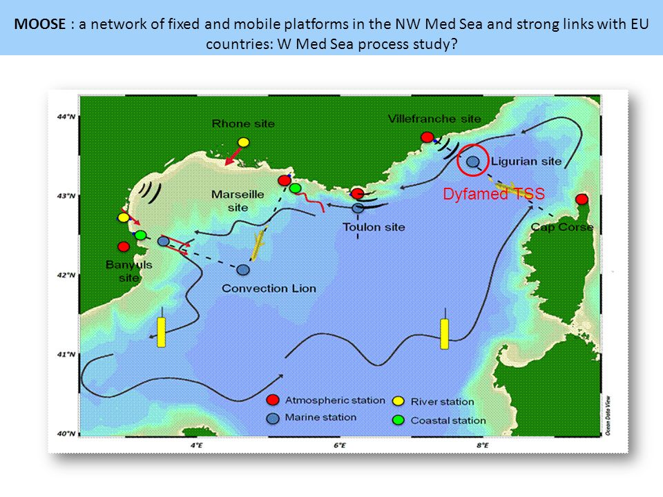 MOOSE : a network of fixed and mobile platforms in the NW Med Sea and strong links with EU countries: W Med Sea process study
