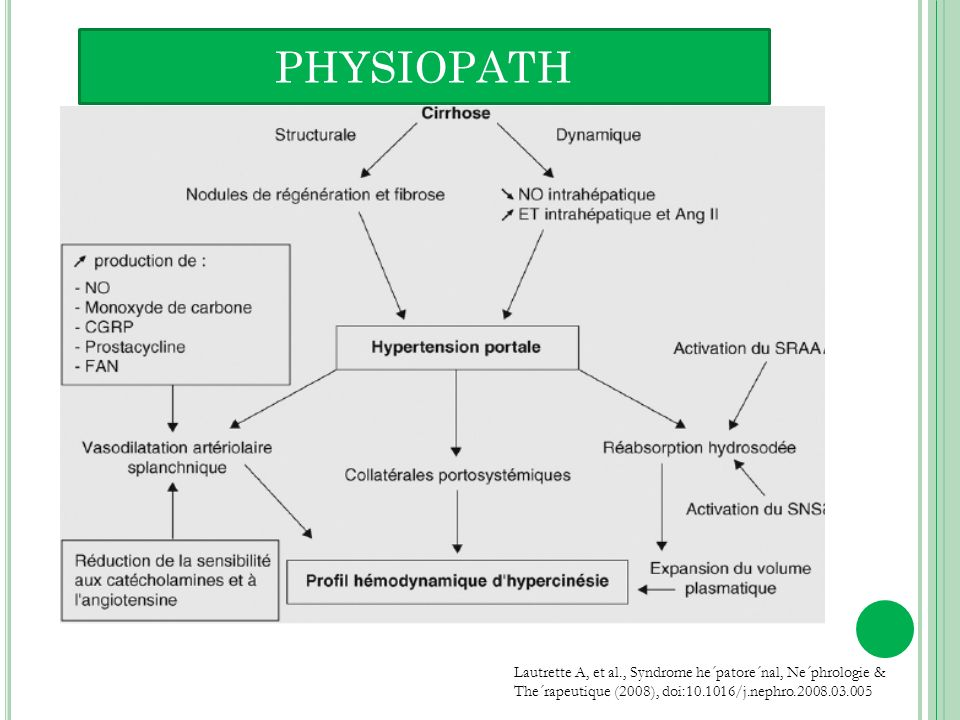 PHYSIOPATH Lautrette A, et al., Syndrome he´patore´nal, Ne´phrologie & The´rapeutique (2008), doi: /j.nephro