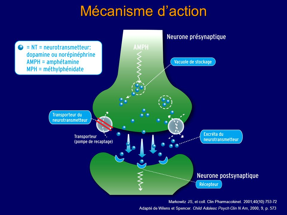 Mécanisme d'action Pharmacotherapy Oct;23(10): Related Articles, Links.