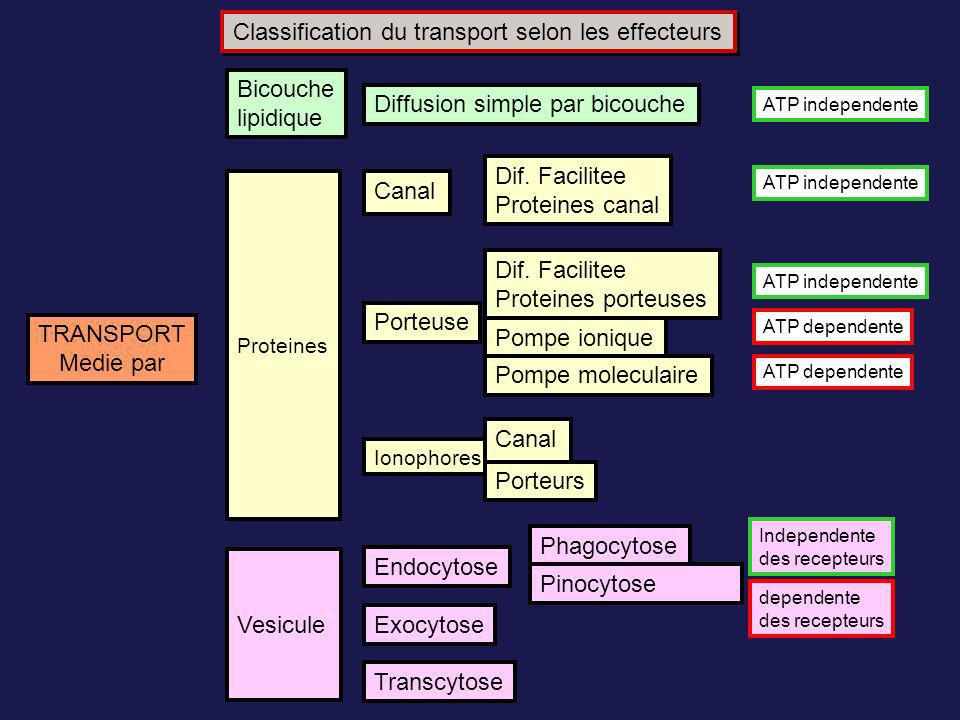 Classification du transport selon les effecteurs