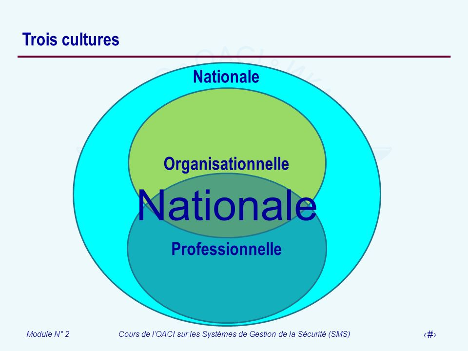 Trois cultures Nationale Organisationnelle Professionnelle Nationale