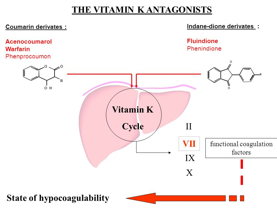 THE VITAMIN K ANTAGONISTS