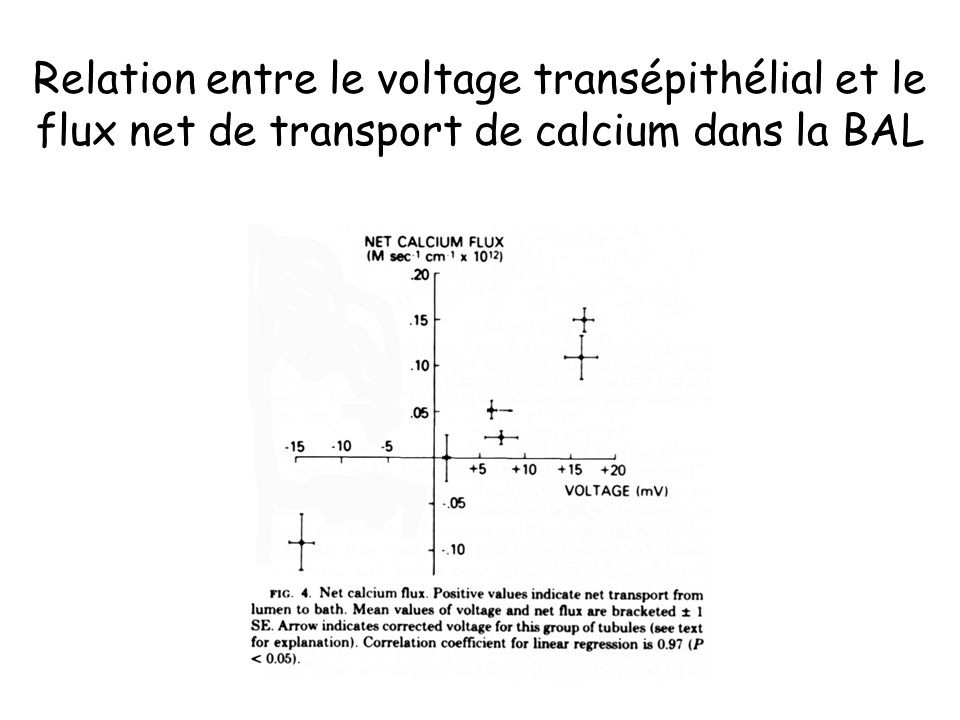 Relation entre le voltage transépithélial et le flux net de transport de calcium dans la BAL