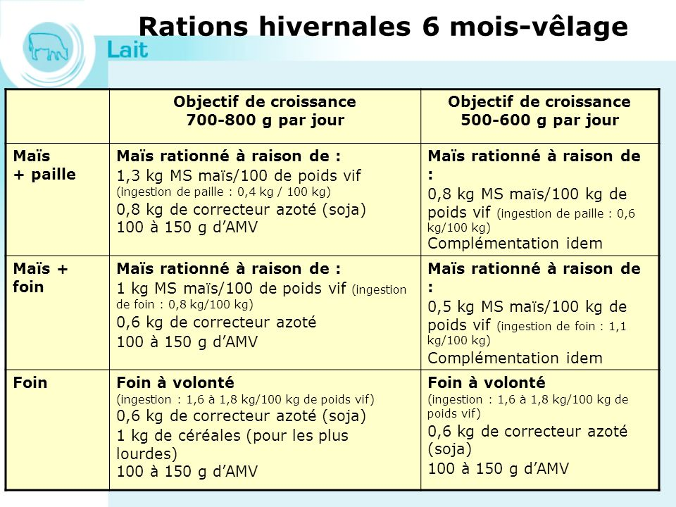 Rations hivernales 6 mois-vêlage