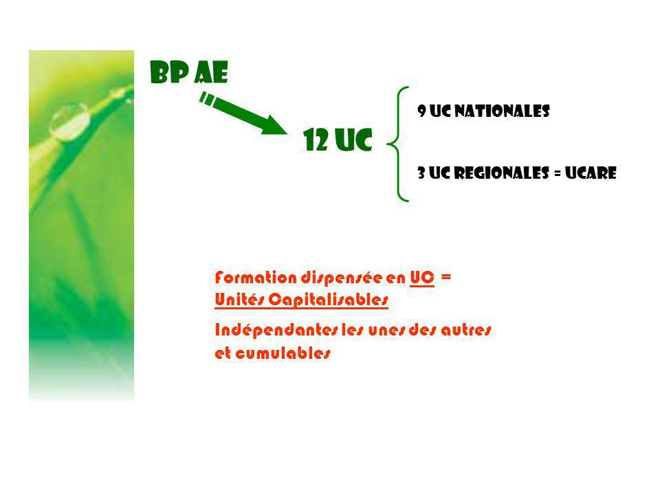 BP AE 12 UC Formation dispensée en UC = Unités Capitalisables