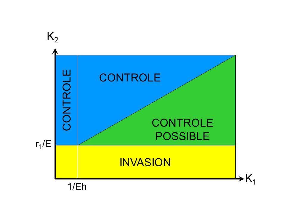 K2 CONTROLE CONTROLE POSSIBLE CONTROLE r1/E INVASION K1 1/Eh