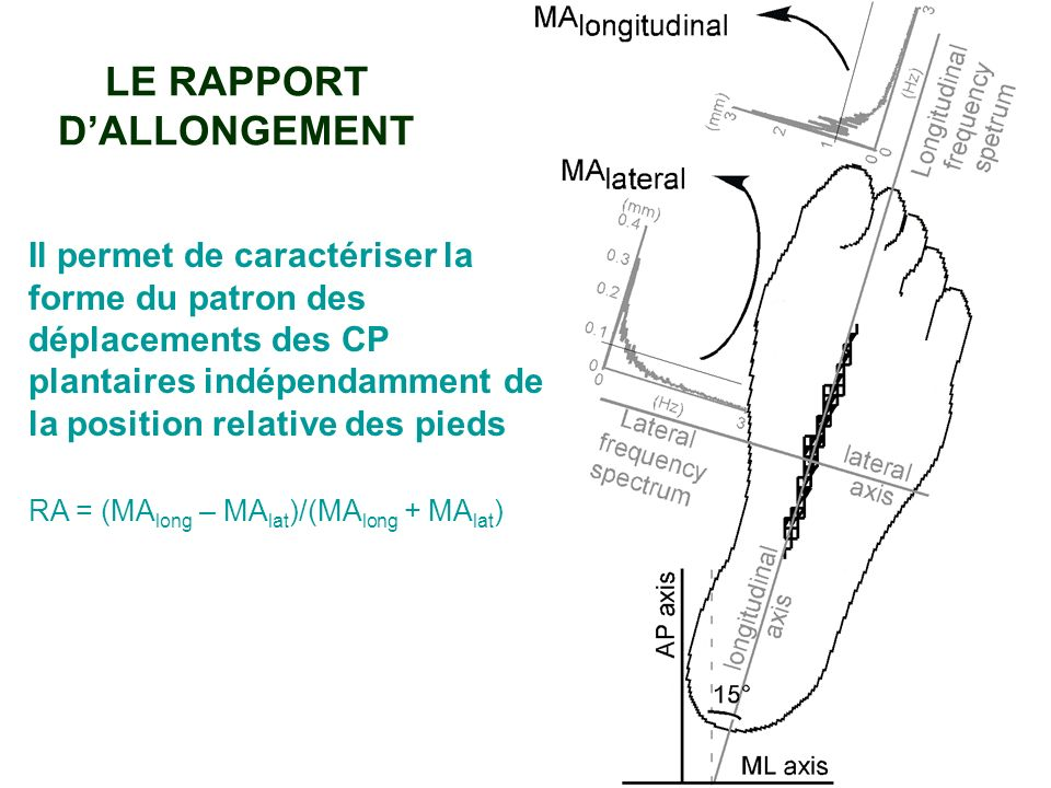 LE RAPPORT D'ALLONGEMENT
