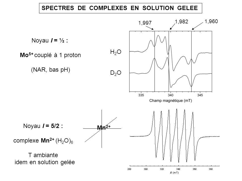 SPECTRES DE COMPLEXES EN SOLUTION GELEE