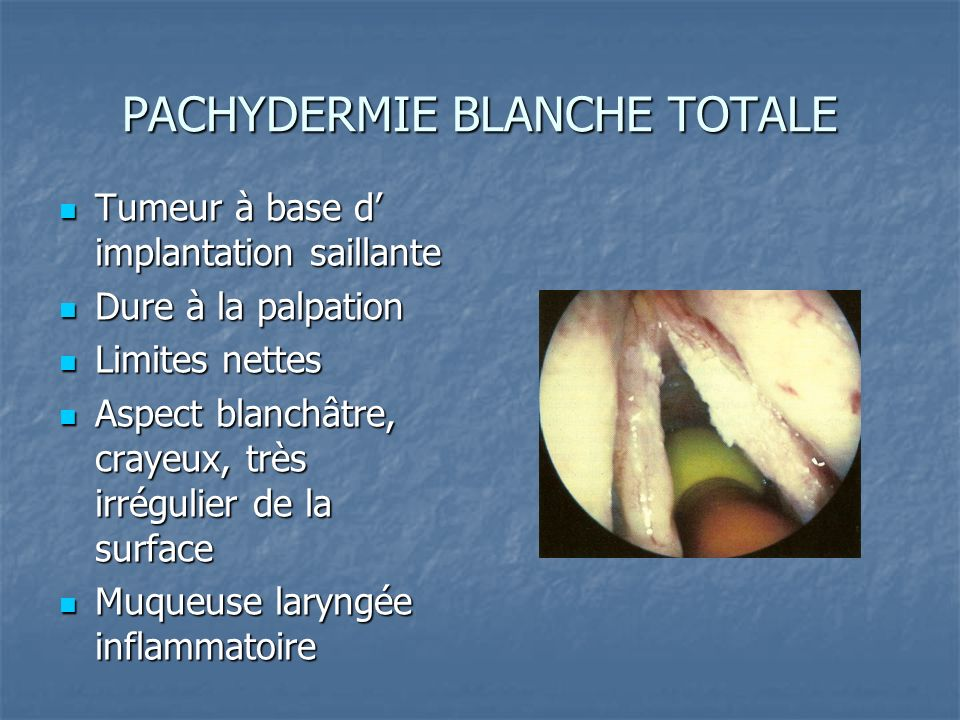 PACHYDERMIE BLANCHE TOTALE