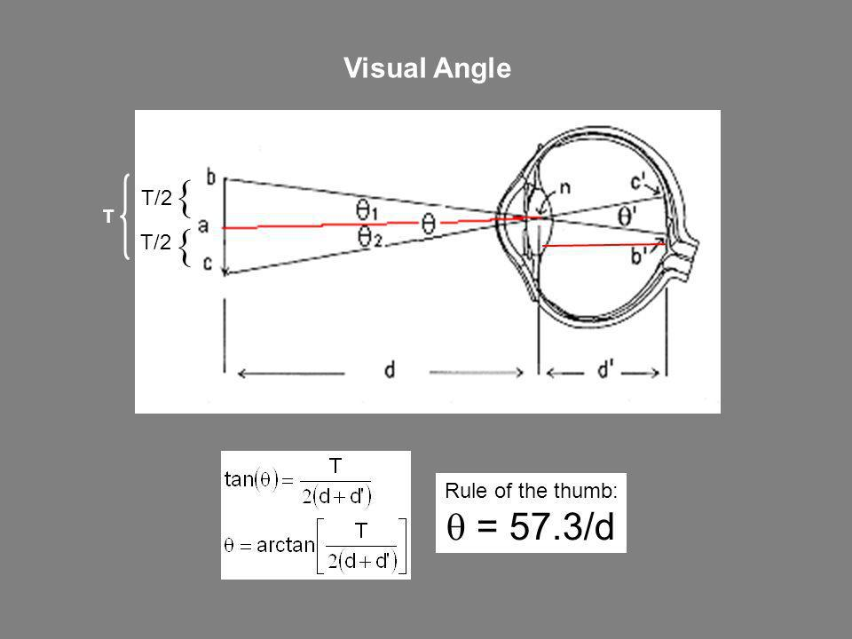 Visual Angle T/2  T Rule of the thumb: q = 57.3/d