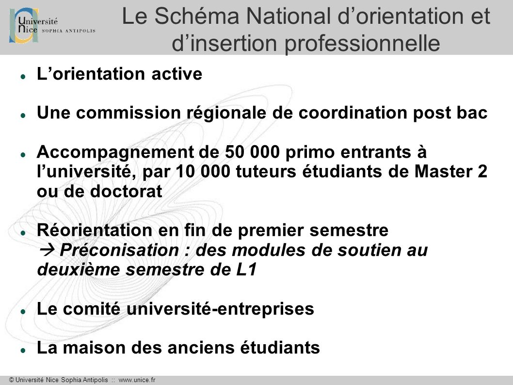 Le Schéma National d'orientation et d'insertion professionnelle