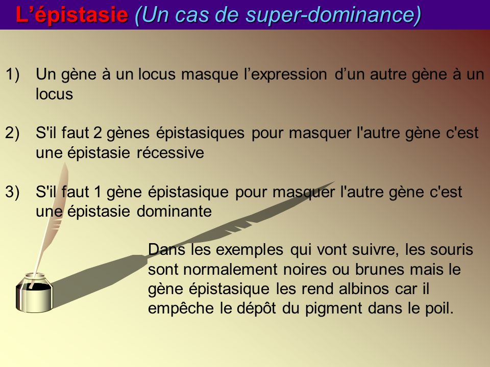 L'épistasie (Un cas de super-dominance)