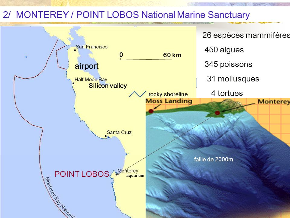 2/ MONTEREY / POINT LOBOS National Marine Sanctuary