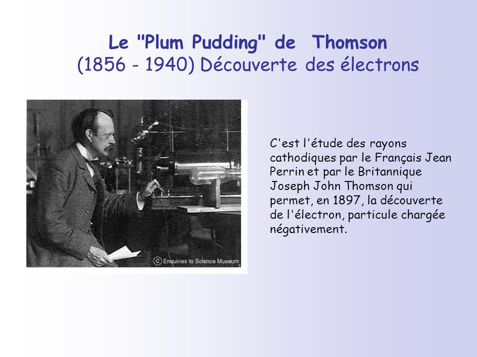 Le Plum Pudding de Thomson