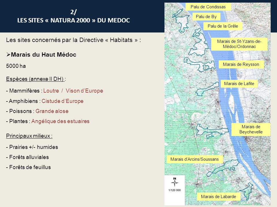 2/ LES SITES « NATURA 2000 » DU MEDOC