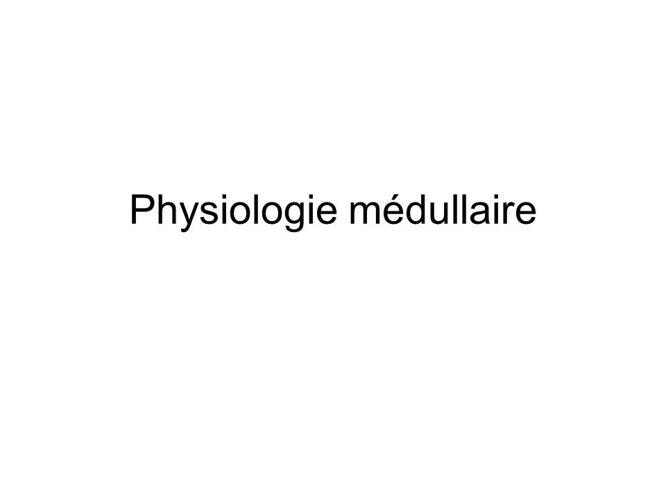 Physiologie médullaire
