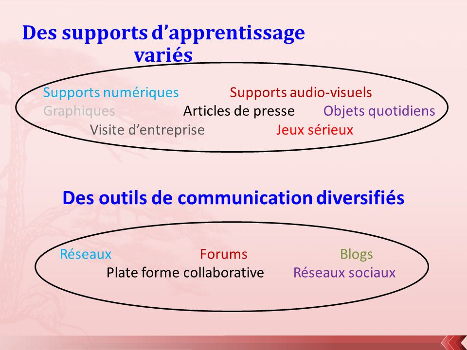 Des supports d'apprentissage variés
