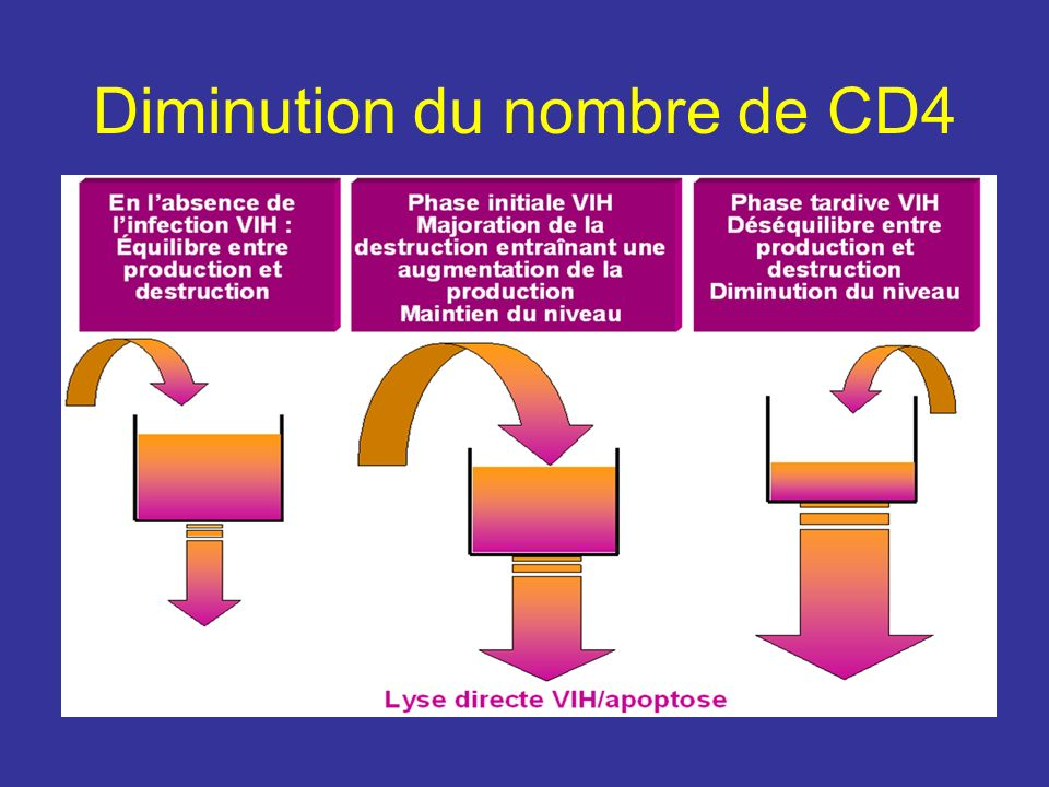 Diminution du nombre de CD4