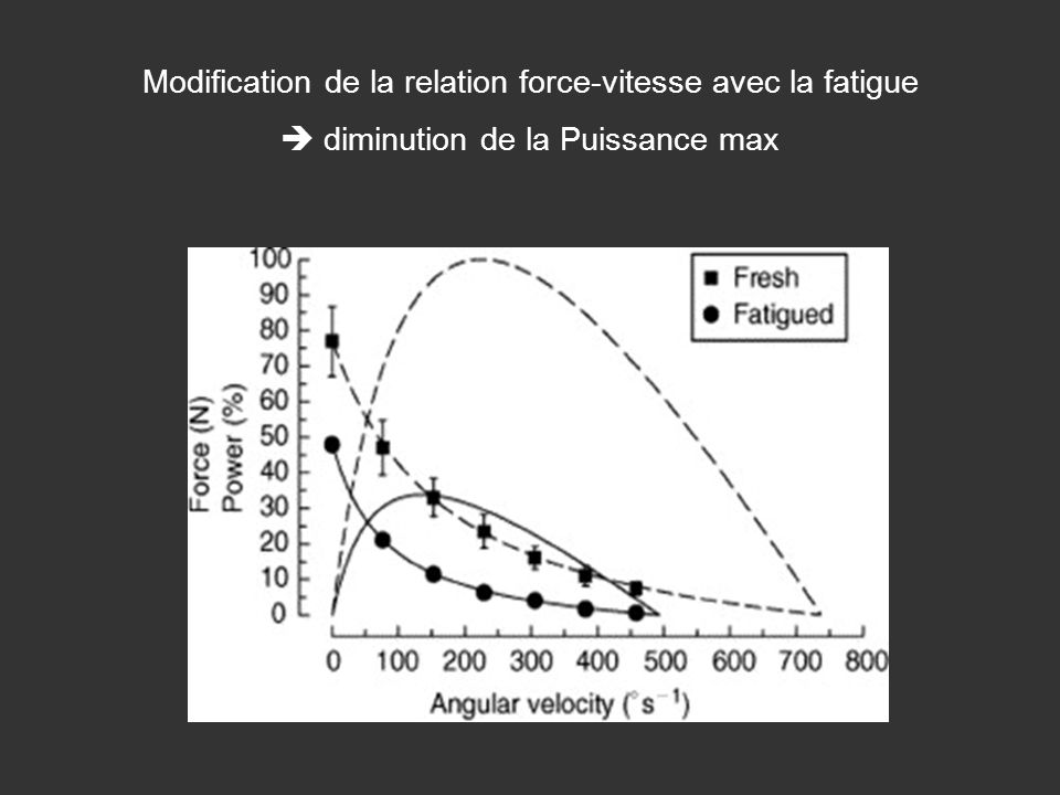 Modification de la relation force-vitesse avec la fatigue