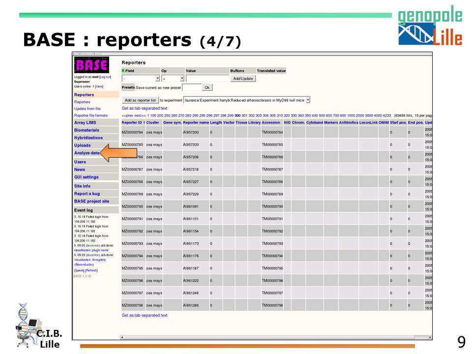 BASE : reporters (4/7)