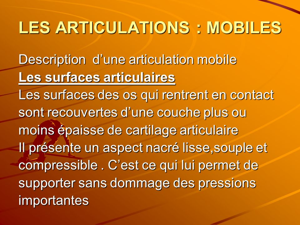 LES ARTICULATIONS : MOBILES