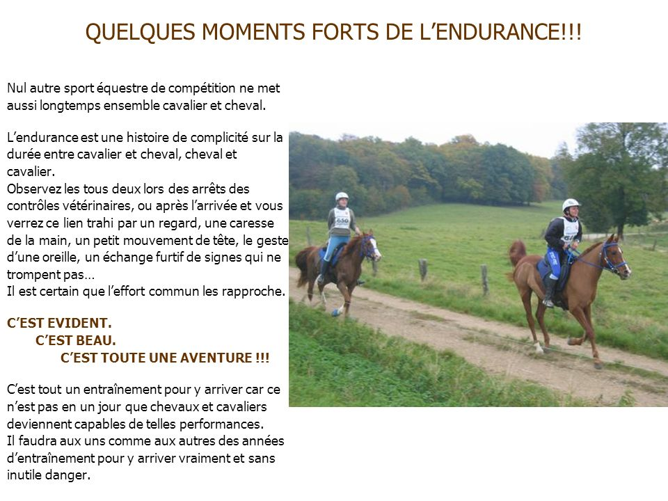 QUELQUES MOMENTS FORTS DE L'ENDURANCE!!!