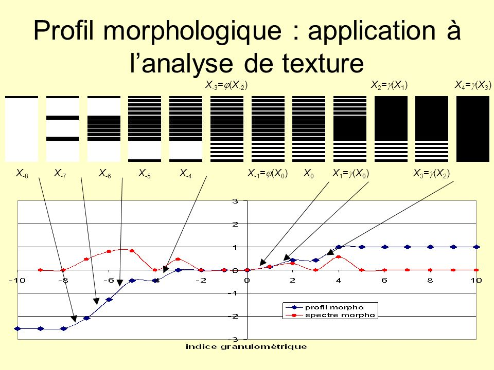 Profil morphologique : application à l'analyse de texture