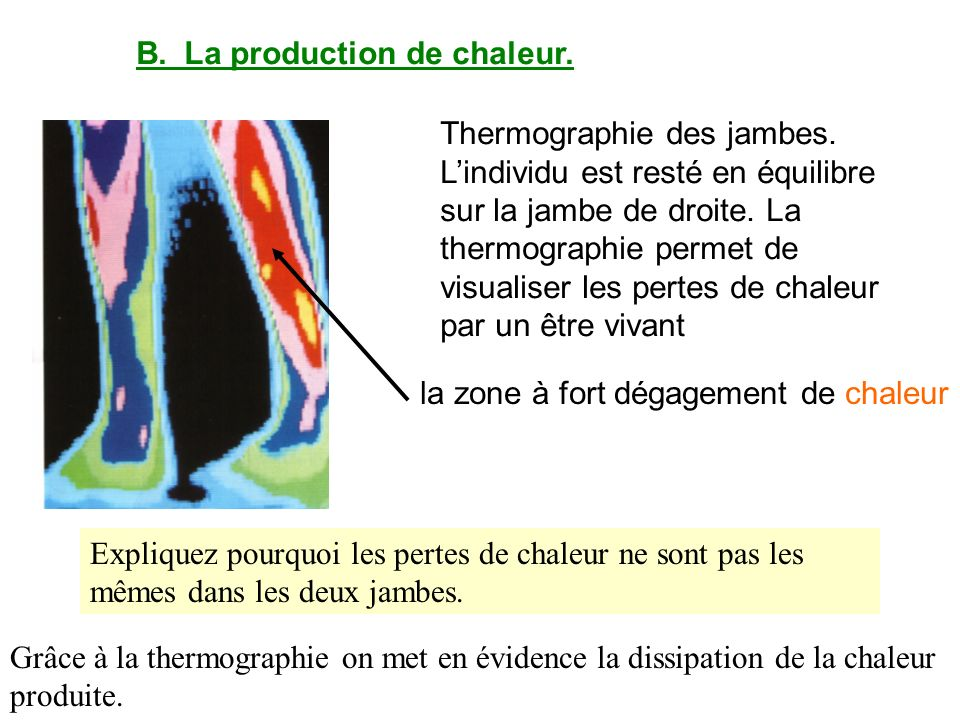 B. La production de chaleur.