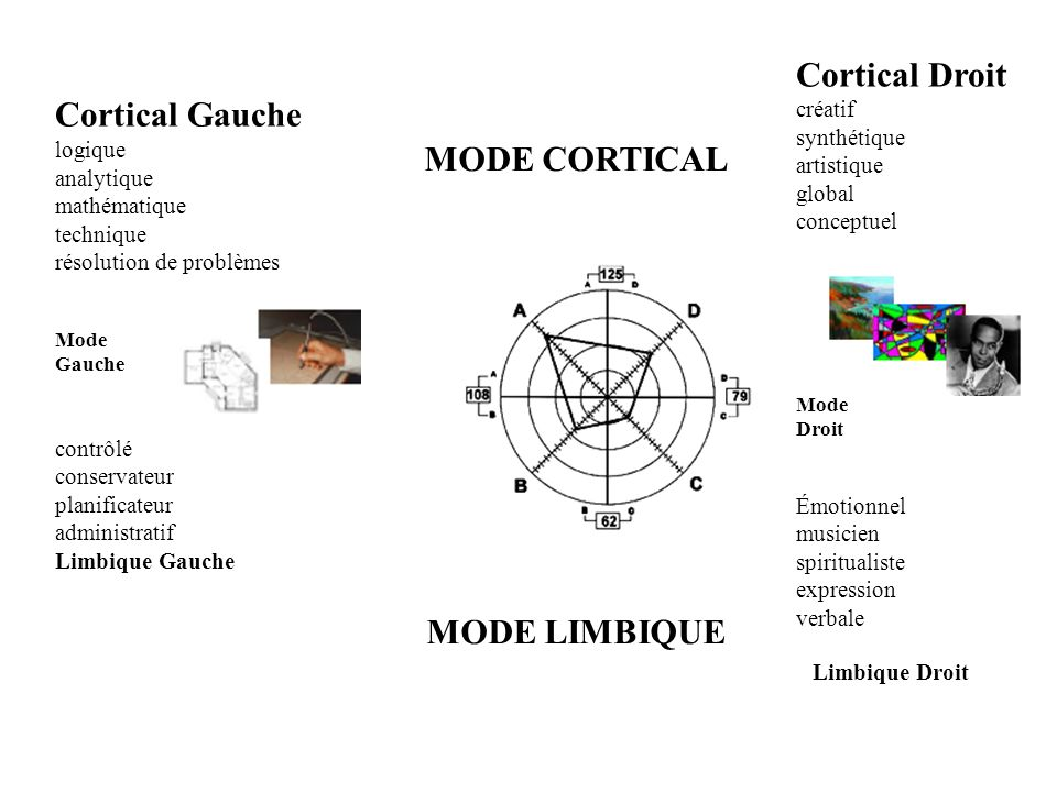 Cortical Droit Cortical Gauche MODE CORTICAL MODE LIMBIQUE