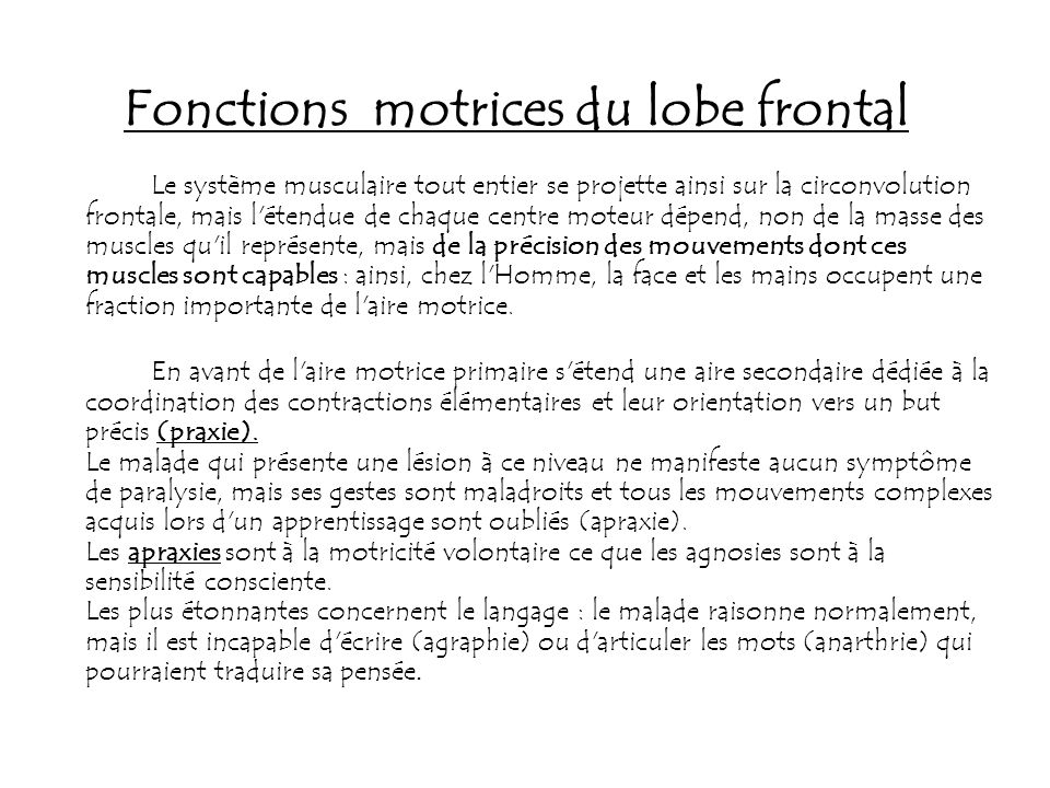 Fonctions motrices du lobe frontal