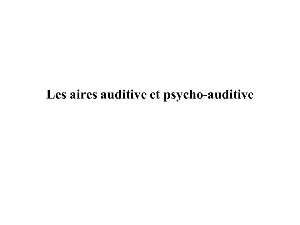 Les aires auditive et psycho-auditive