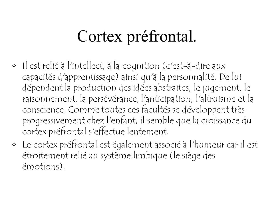 Cortex préfrontal.