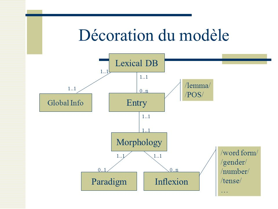 Décoration du modèle Lexical DB Entry Morphology Paradigm Inflexion