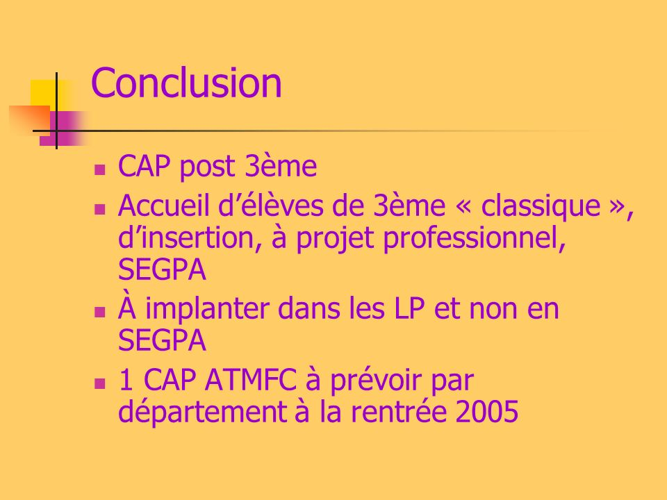 Conclusion CAP post 3ème