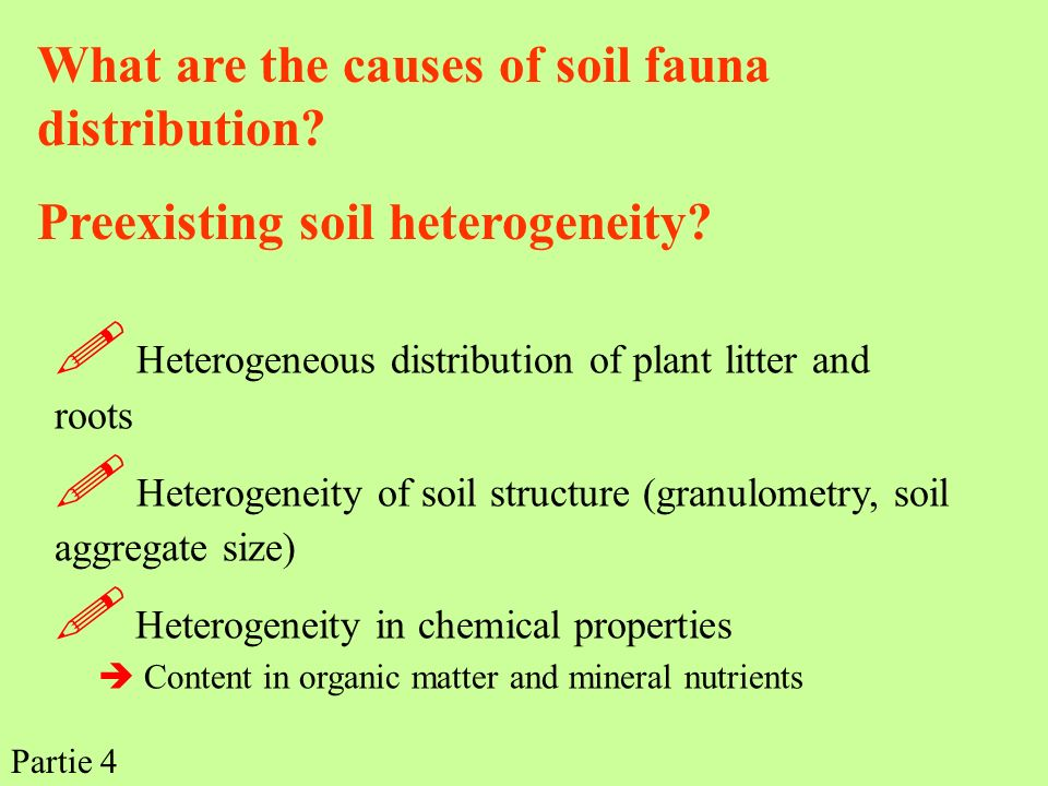  Heterogeneous distribution of plant litter and roots