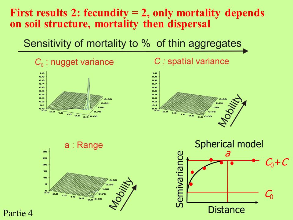 First results 2: fecundity = 2, only mortality depends on soil structure, mortality then dispersal