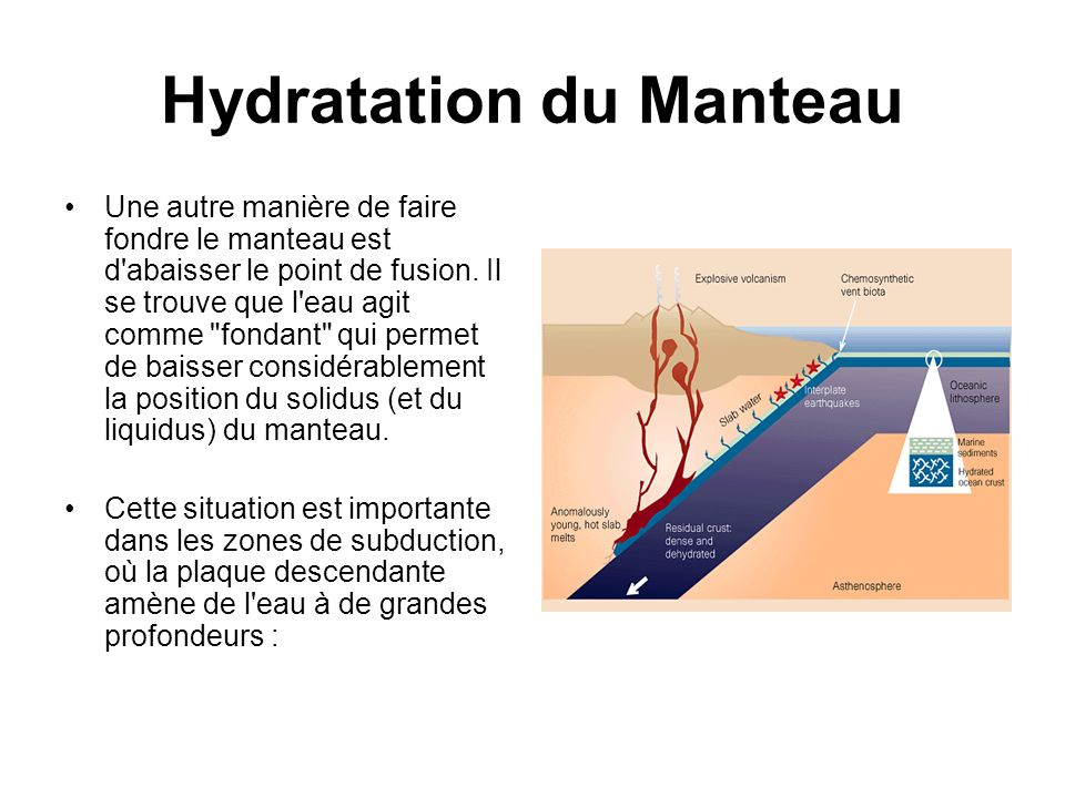 Hydratation du Manteau