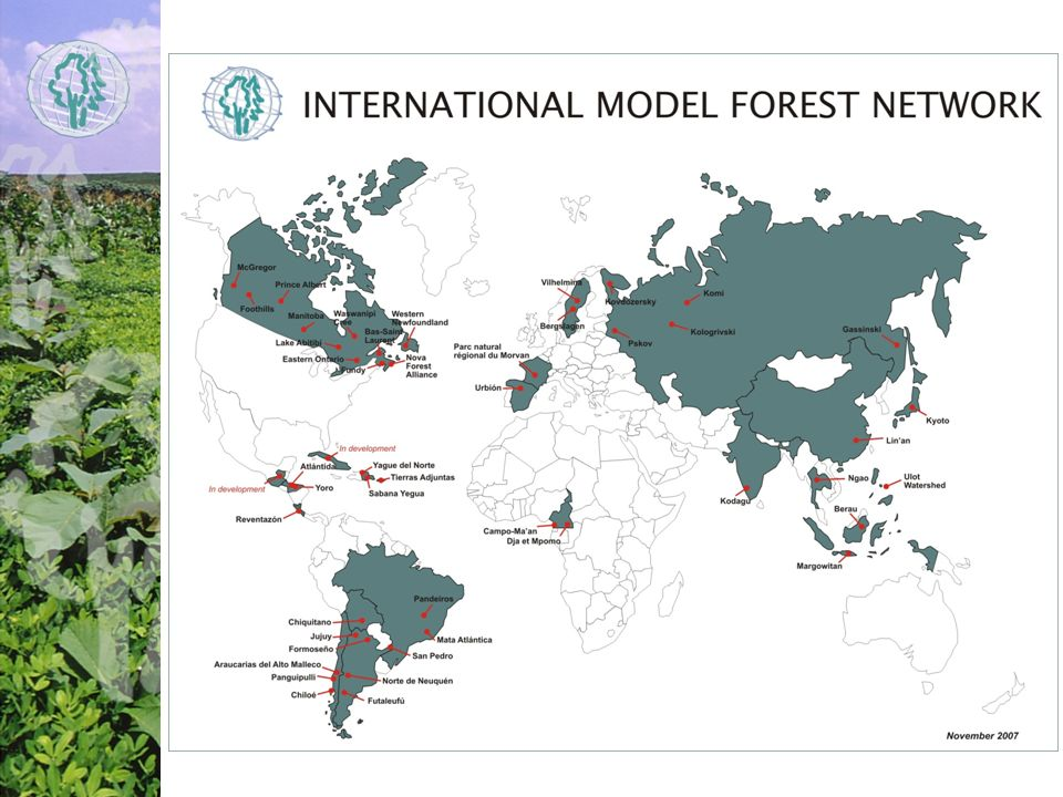 Currently, 40 model forests established or under development in 19 countries on 5 continents