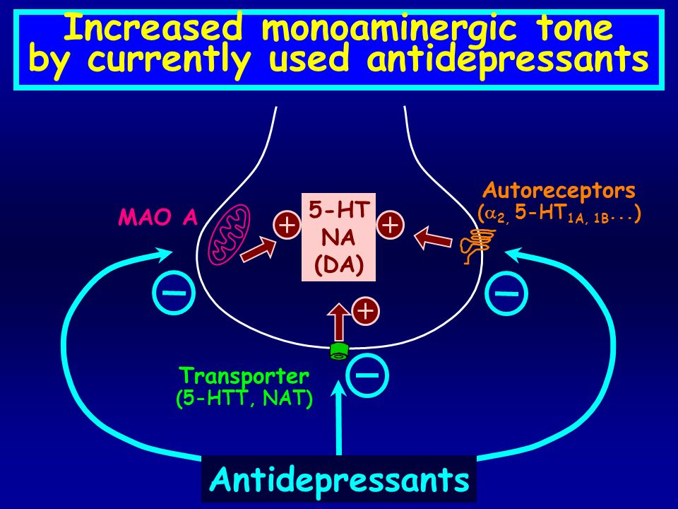 Increased monoaminergic tone by currently used antidepressants