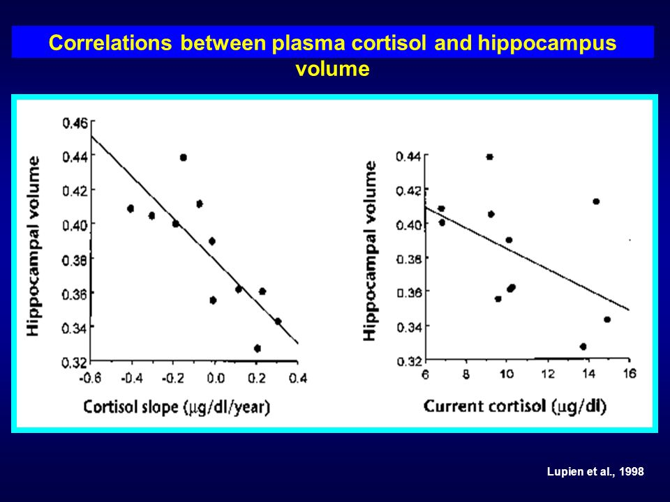 Correlations between plasma cortisol and hippocampus volume